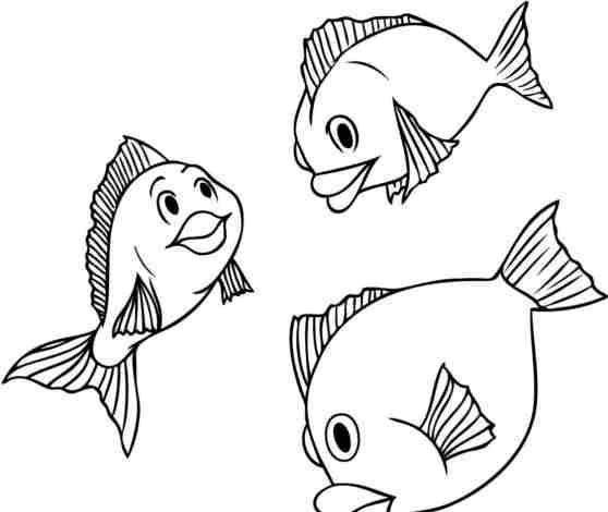 ছবিসূত্র মাছ আঁকা শেখার ওয়েবসাইট