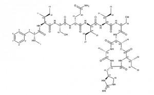 টিক্সোব্যাকটিন (Teixobactin) হয়তো অত্যন্ত সফল অ্যান্টিবায়োটিক হতে যাচ্ছে