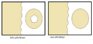 দ্বিতীয় ও প্রথম শ্রেণীর ছিটমহল (2nd and 1st order enclaves) (খসরাচিত্র)