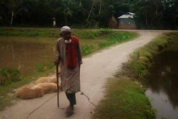 মশালডাঙার ১০৬ বছর বয়সী আজগর আলি।