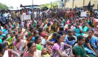 মুন্নারে নারী চা-শ্রমিক ধর্মঘট : 'পুরুষ নয়, ইউনিয়ন নয়; ওদের মদ খাইয়ে ভুল বোঝানো সোজা'